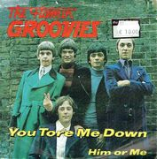 Flamin' Groovies: You Tore Me Down / Him Or Me