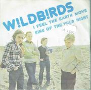 Wildbirds: I Feel The Earth Move / King Of The Wild Night